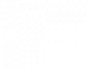 Comunicación Vital